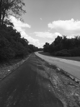 The road. Where spider webs constantly attack me.